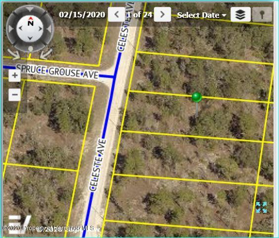 Listing Details for 0 Celeste Avenue, Brooksville, FL 34614