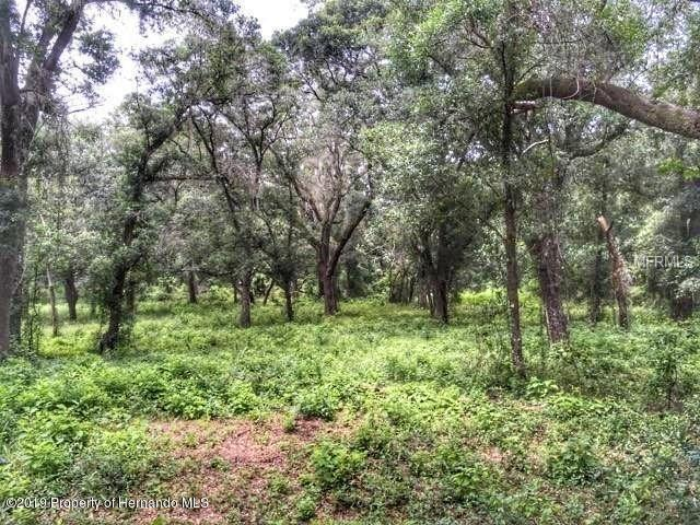 Listing photo id 50 for 33619 Chipco Ranch Road