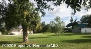 Listing Details for 0000000000 Chamberlain Street, Spring Hill, FL 34609
