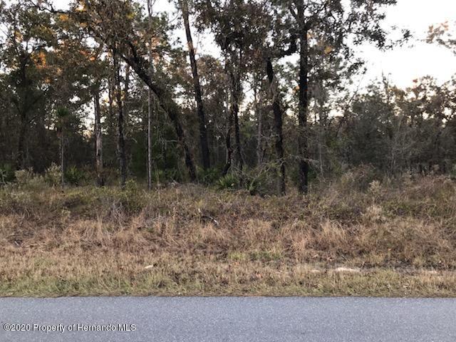 Details for 00000 Yellow Hammer Rd, Brooksville, FL 34614
