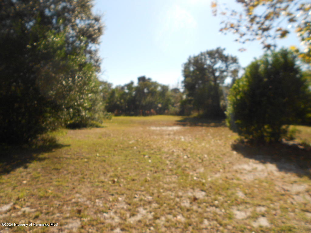 Listing photo id 6 for 14226 County Line Road