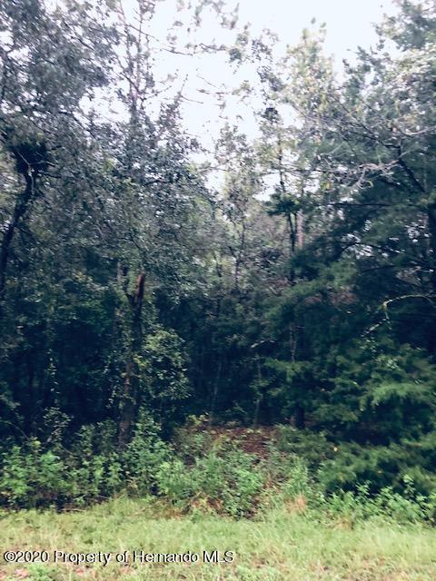 Listing Details for 0 Everglades Kite Road, Weeki Wachee, FL 34614
