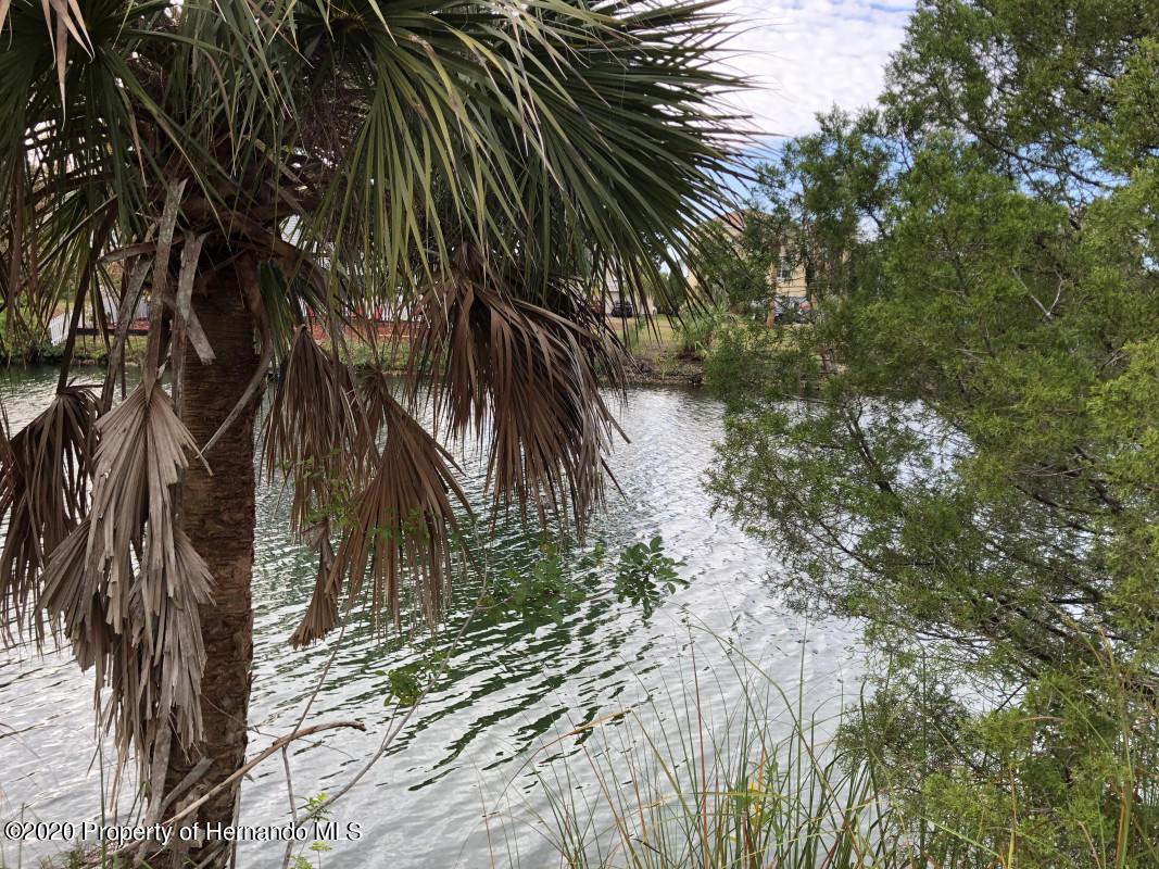 Details for 3245 Rose Arbor Drive, Hernando Beach, FL 34607