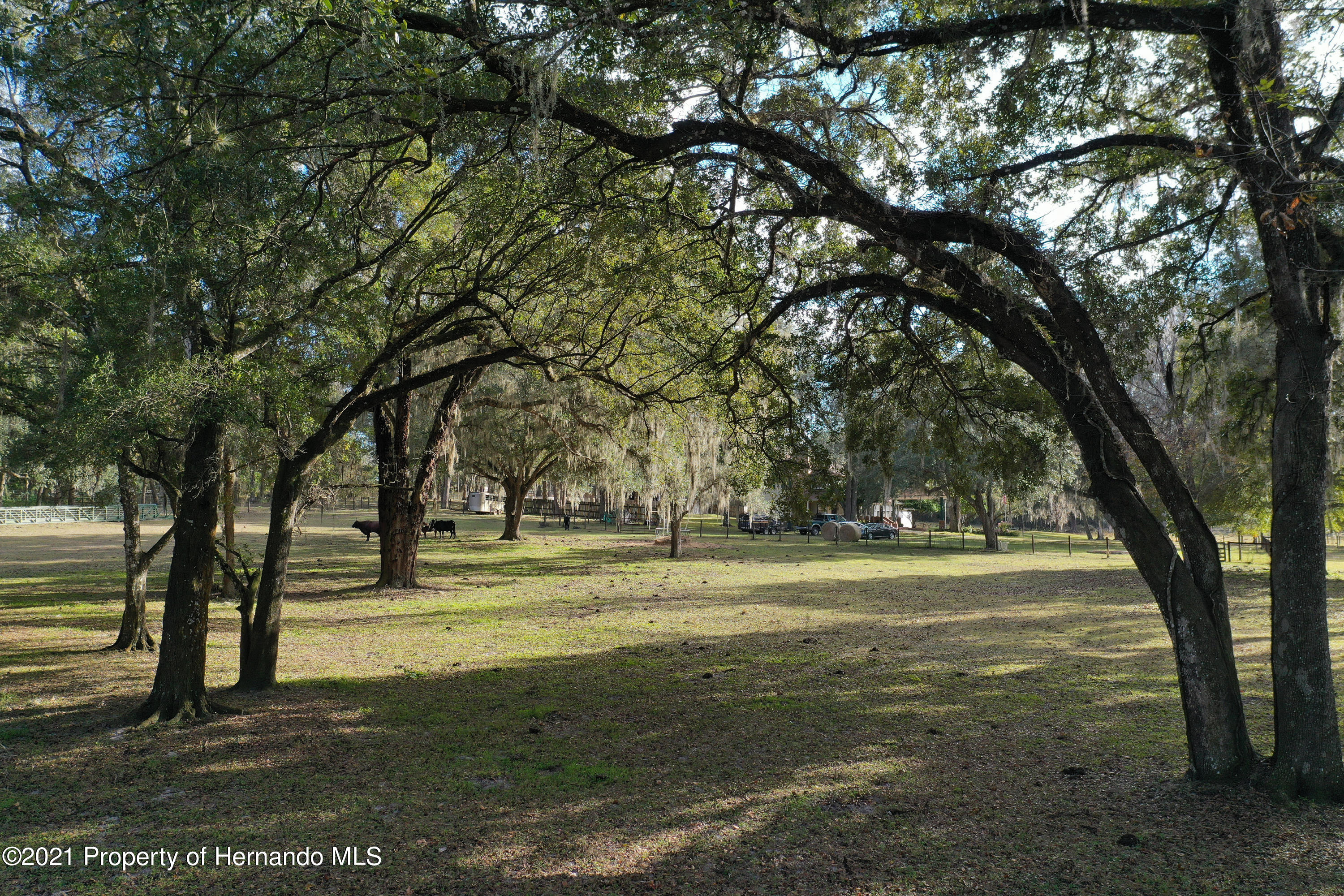 Listing photo id 58 for 5207 Neff Lake Road