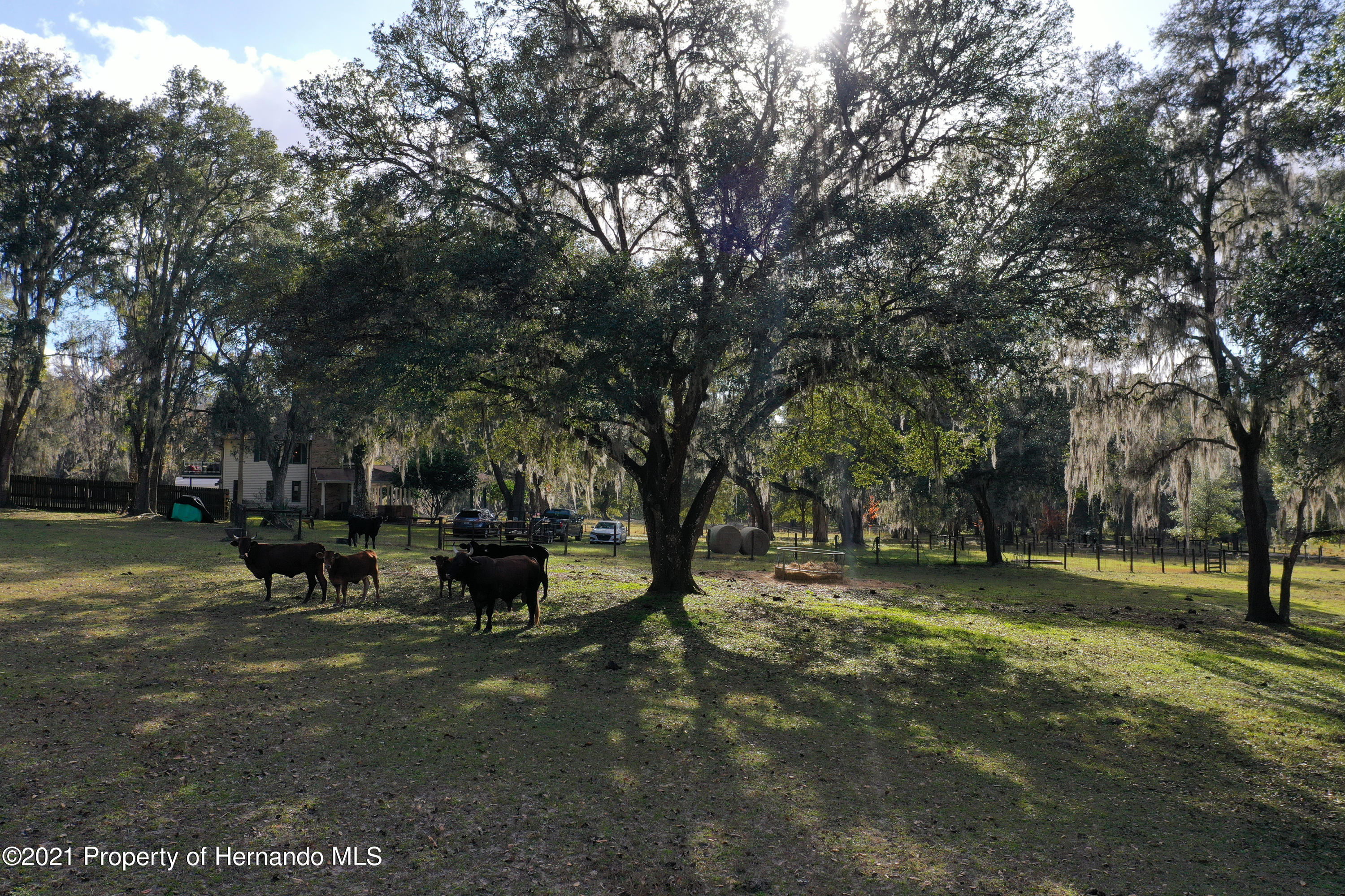 Listing photo id 63 for 5207 Neff Lake Road