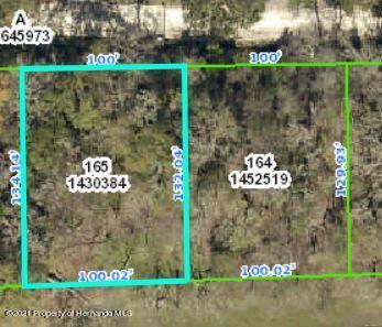 Details for 0 Fitzhugh Avenue, Brooksville, FL 34601