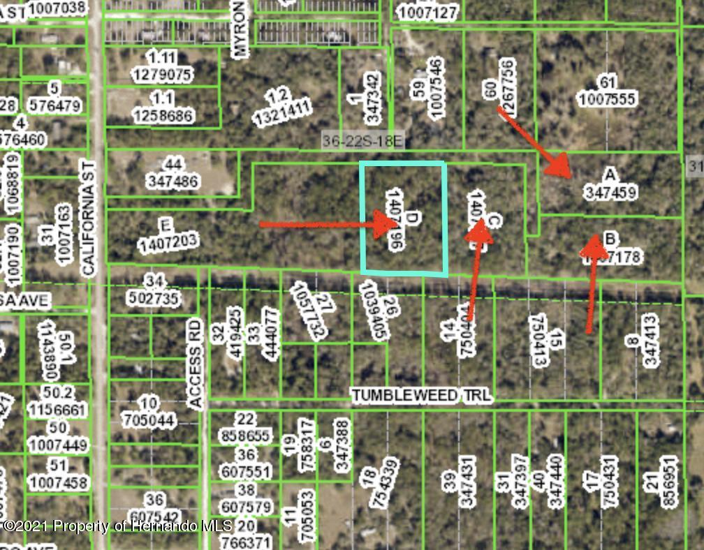 Details for 0 Texas Trail, Brooksville, FL 34604