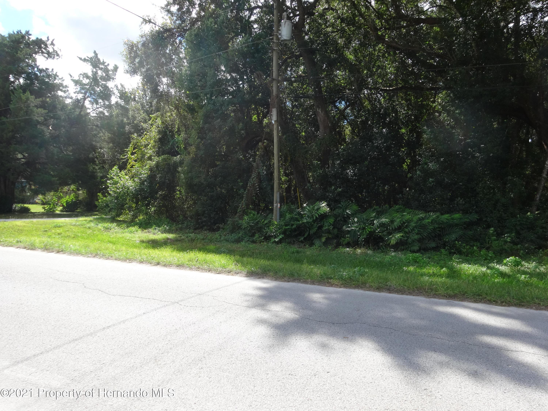 Details for 0 Jenkins, Brooksville, FL 34604