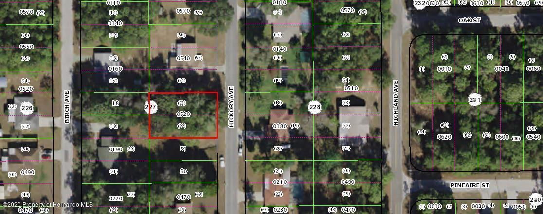 Listing Details for 925 Hickory Avenue, Inverness, FL 34452