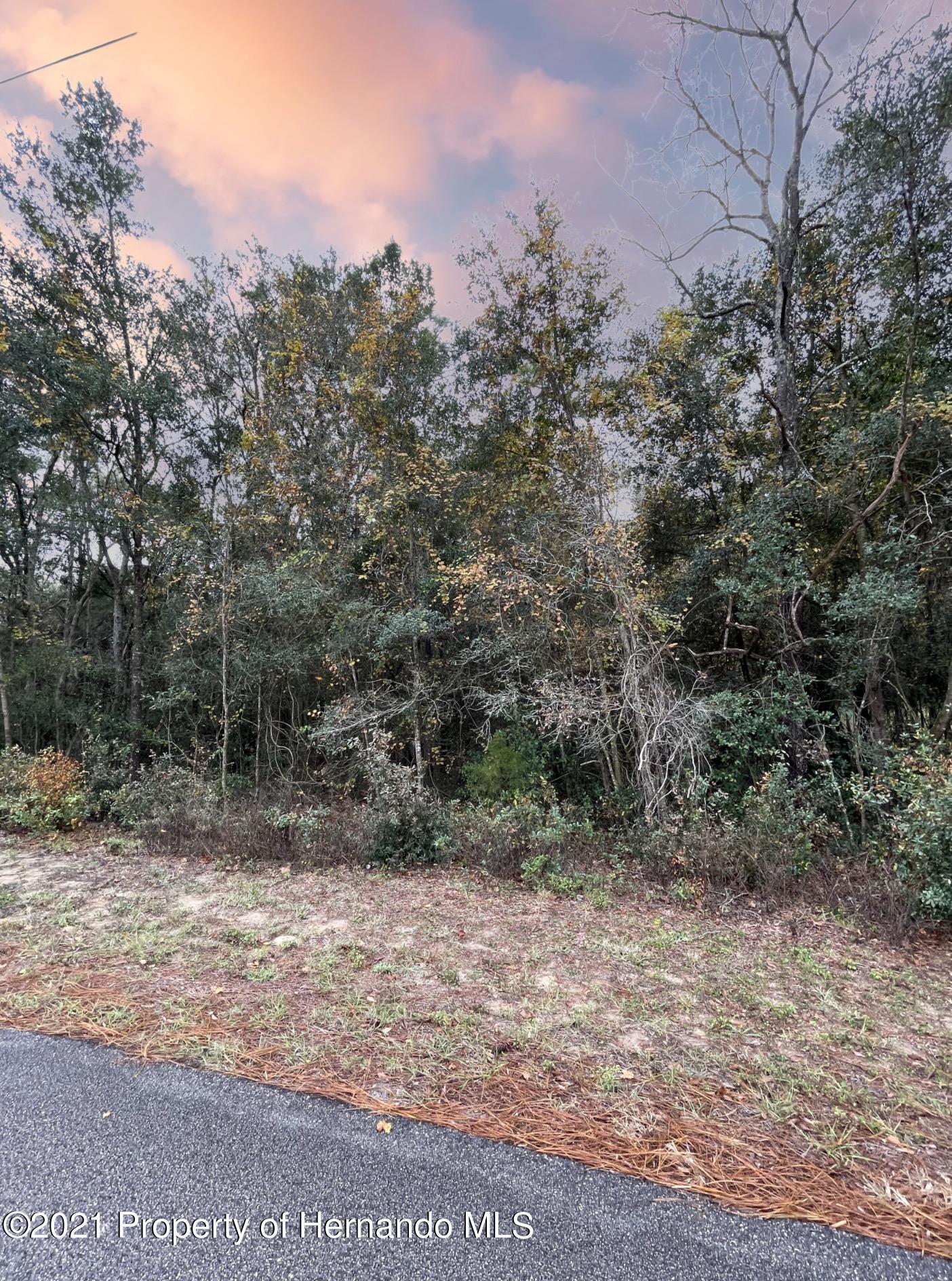 Details for 0 Sunridge, Ridge Manor, FL 33523