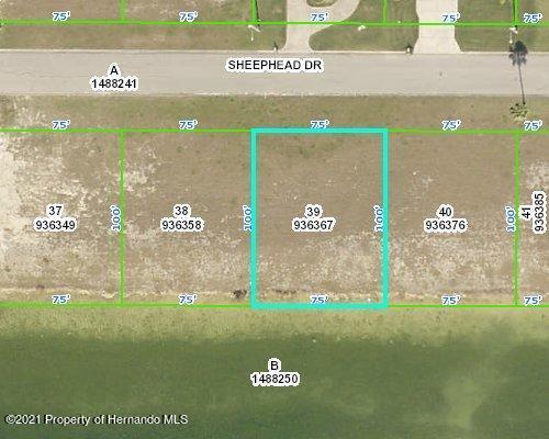Listing Details for 3464 Sheephead Drive, Hernando Beach, FL 34607