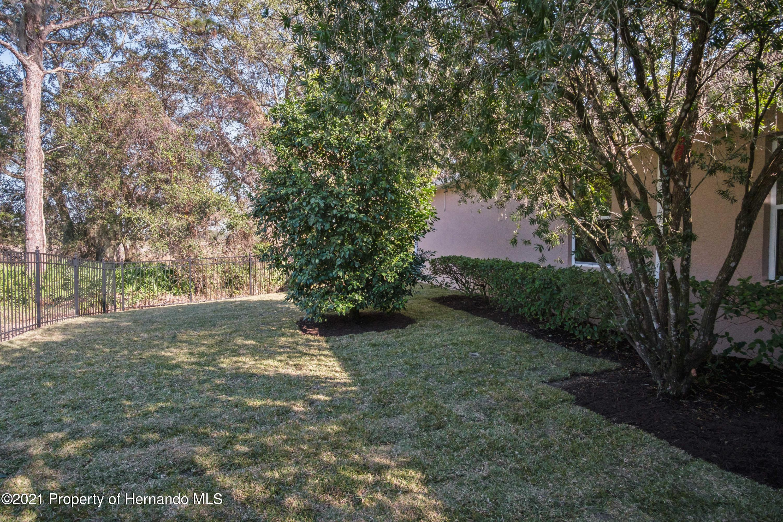 Image 54 For 12714 Seronera Valley Court