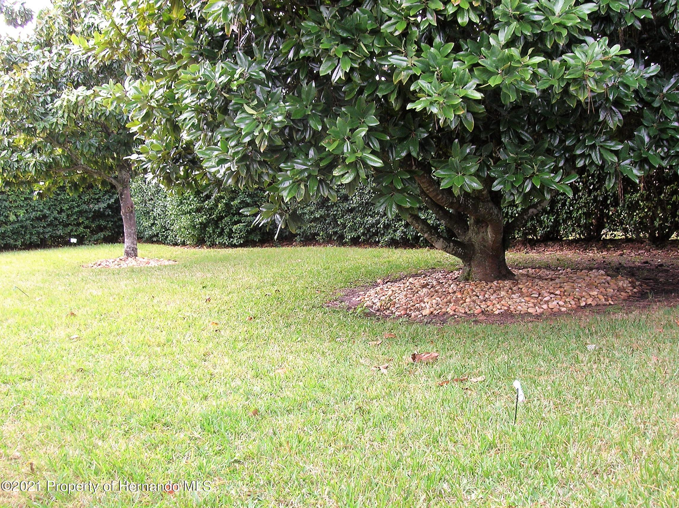 Image 51 For 3407 Cedar Crest Loop