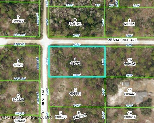 Listing Details for 9352 Zebrafinch Avenue, Weeki Wachee, FL 34614