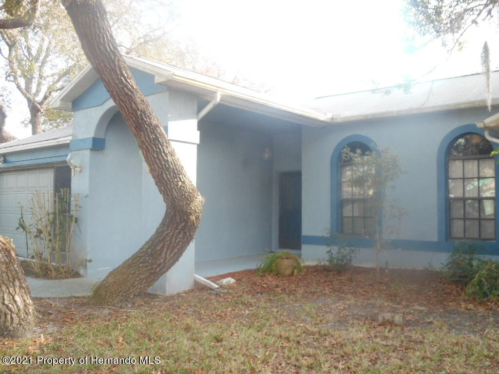 Listing photo id 2 for 7352 Cone Shell Drive