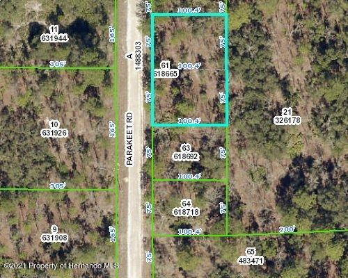 Listing Details for 18074 Parakeet Road, Weeki Wachee, FL 34614