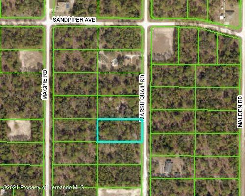 Details for 0 Marsh Quail Road, Weeki Wachee, FL 34614