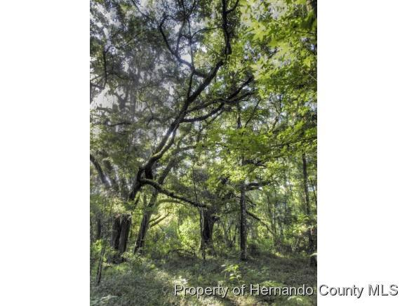 Listing photo id 3 for 10352 Pleasant Grove Road