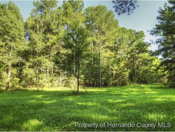 Listing photo id 6 for 10352 Pleasant Grove Road