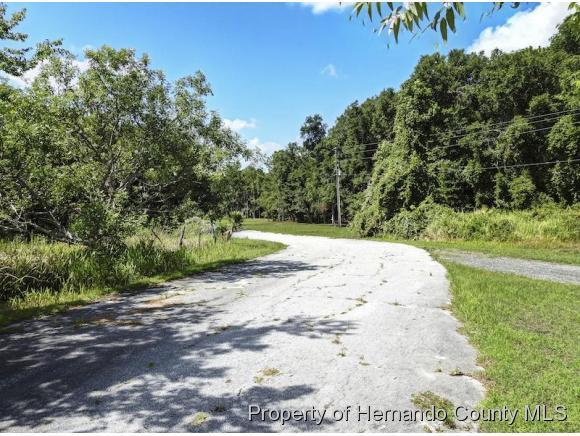 Listing photo id 11 for 10352 Pleasant Grove Road