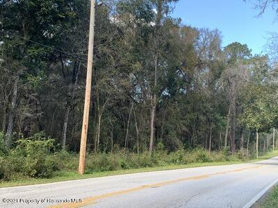 Image 2 of 4 For 03 Culbreath Road