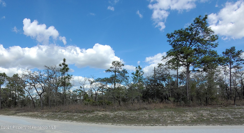 Listing Details for 0 Gonzo Road, Weeki Wachee, FL 34614