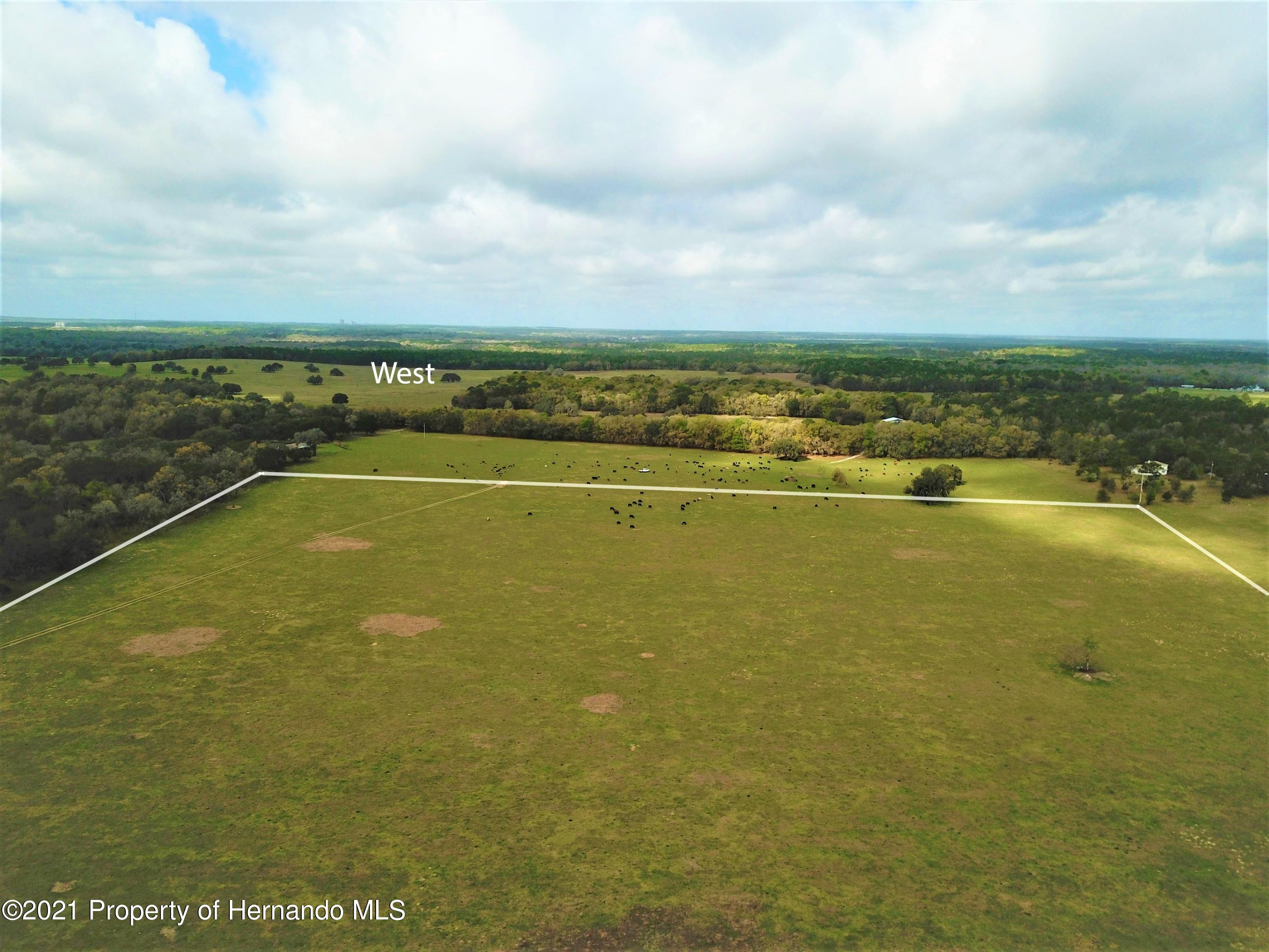 Listing photo id 6 for 12884 S Pleasant Grove Road