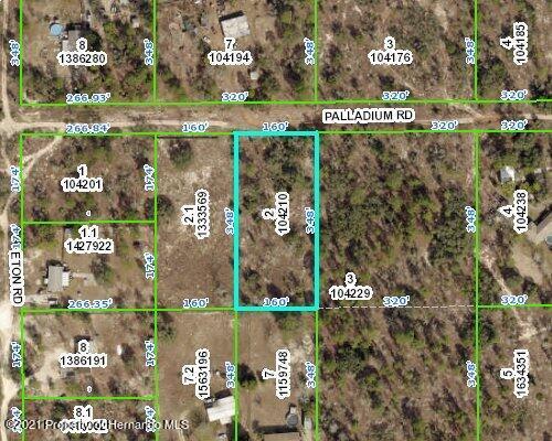 Details for Lot 2 Palladium Road, Brooksville, FL 34613