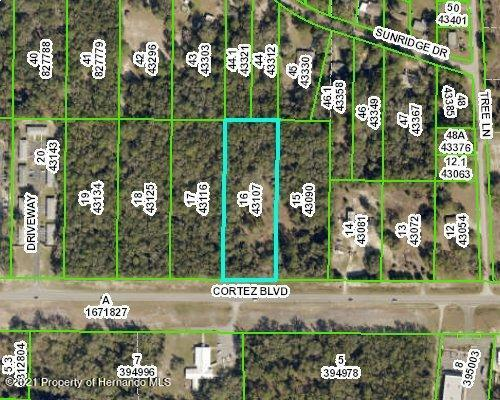 Details for 0 Cortez Boulevard, Ridge Manor, FL 33523