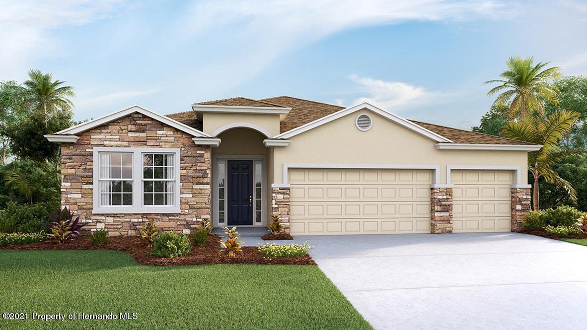 Details for 13514 Golden Lime Avenue, Spring Hill, FL 34609