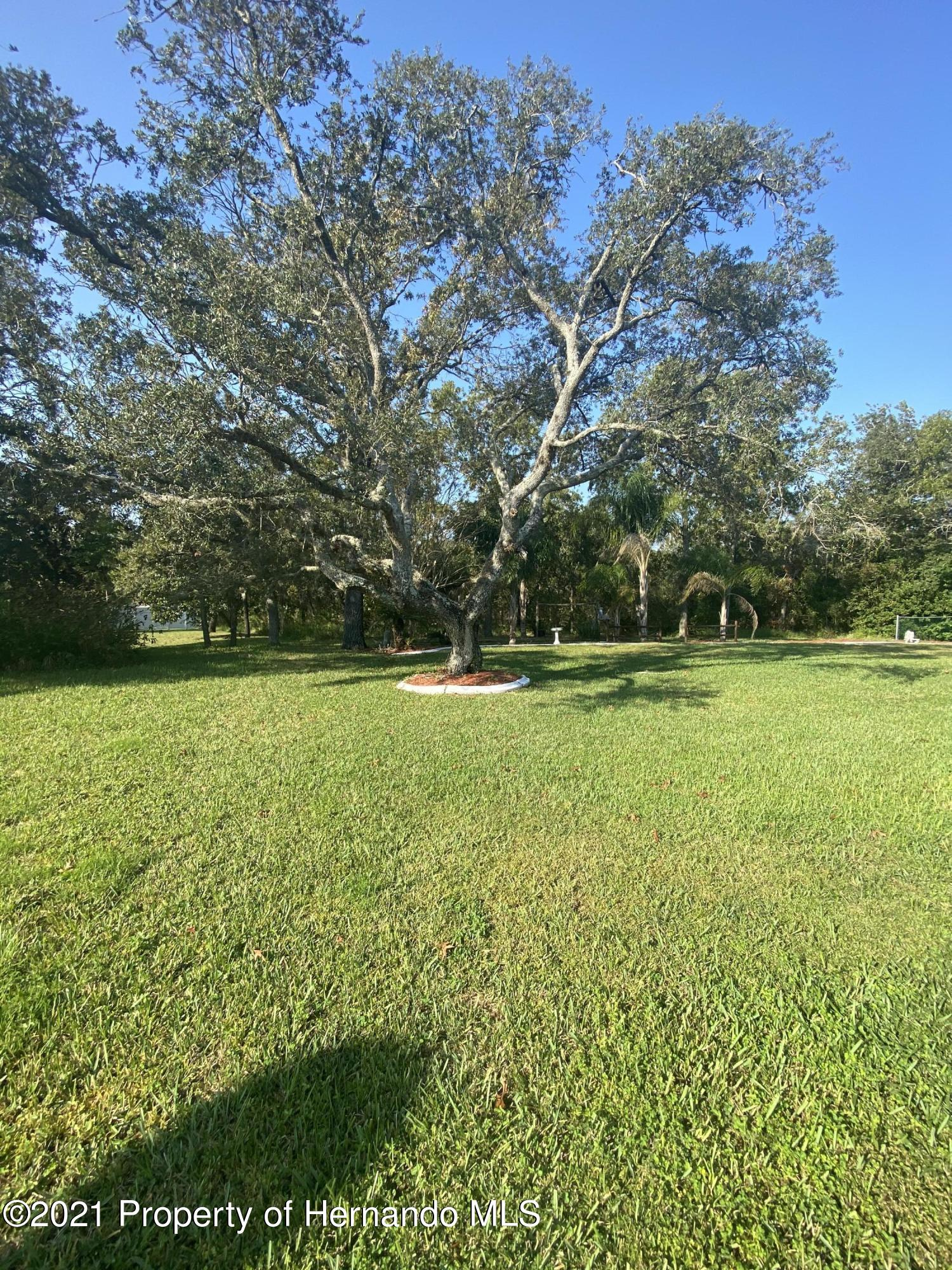 Listing photo id 34 for 4441 Dior Road