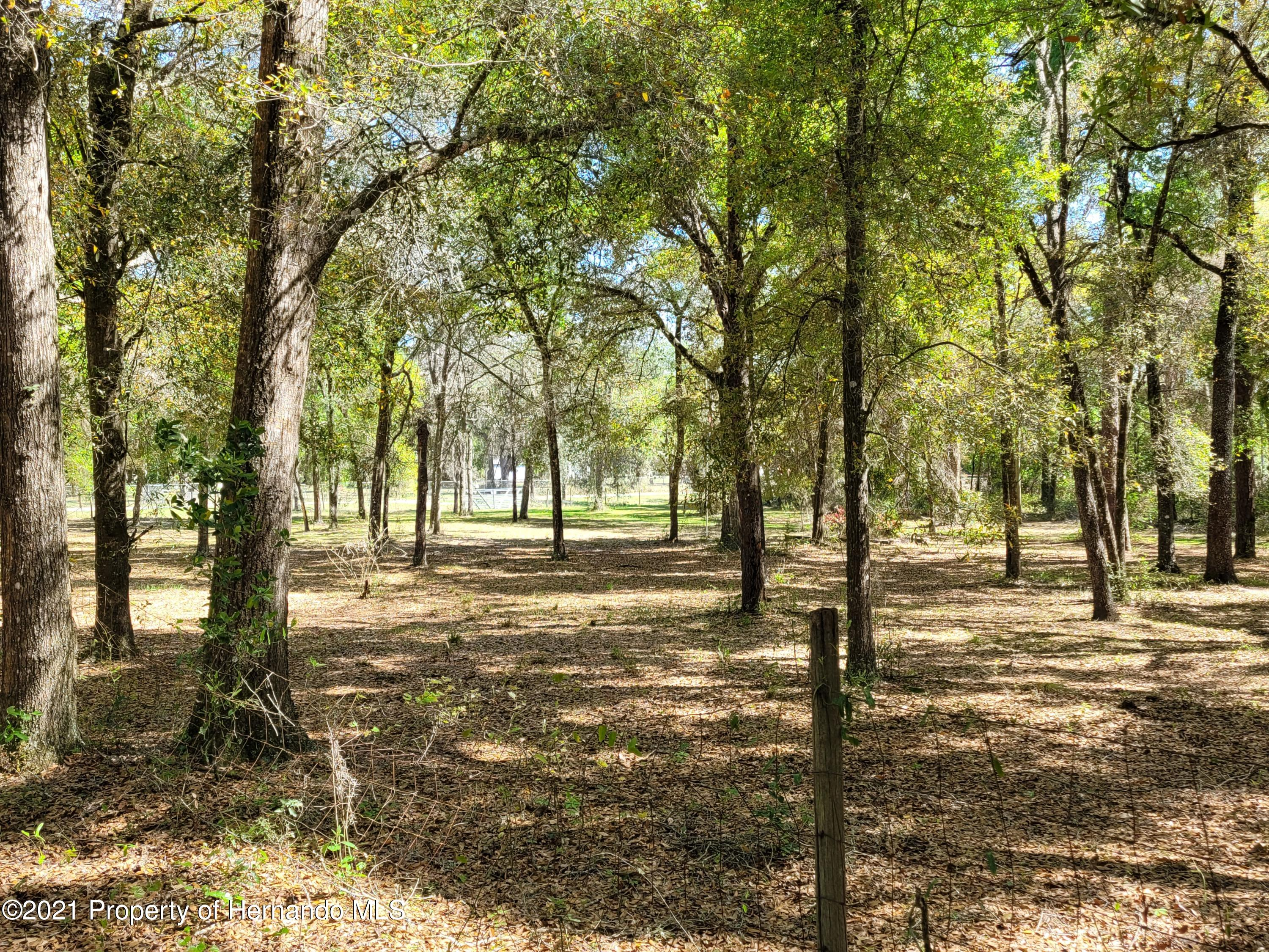 Listing photo id 4 for 17823 Caufield Road