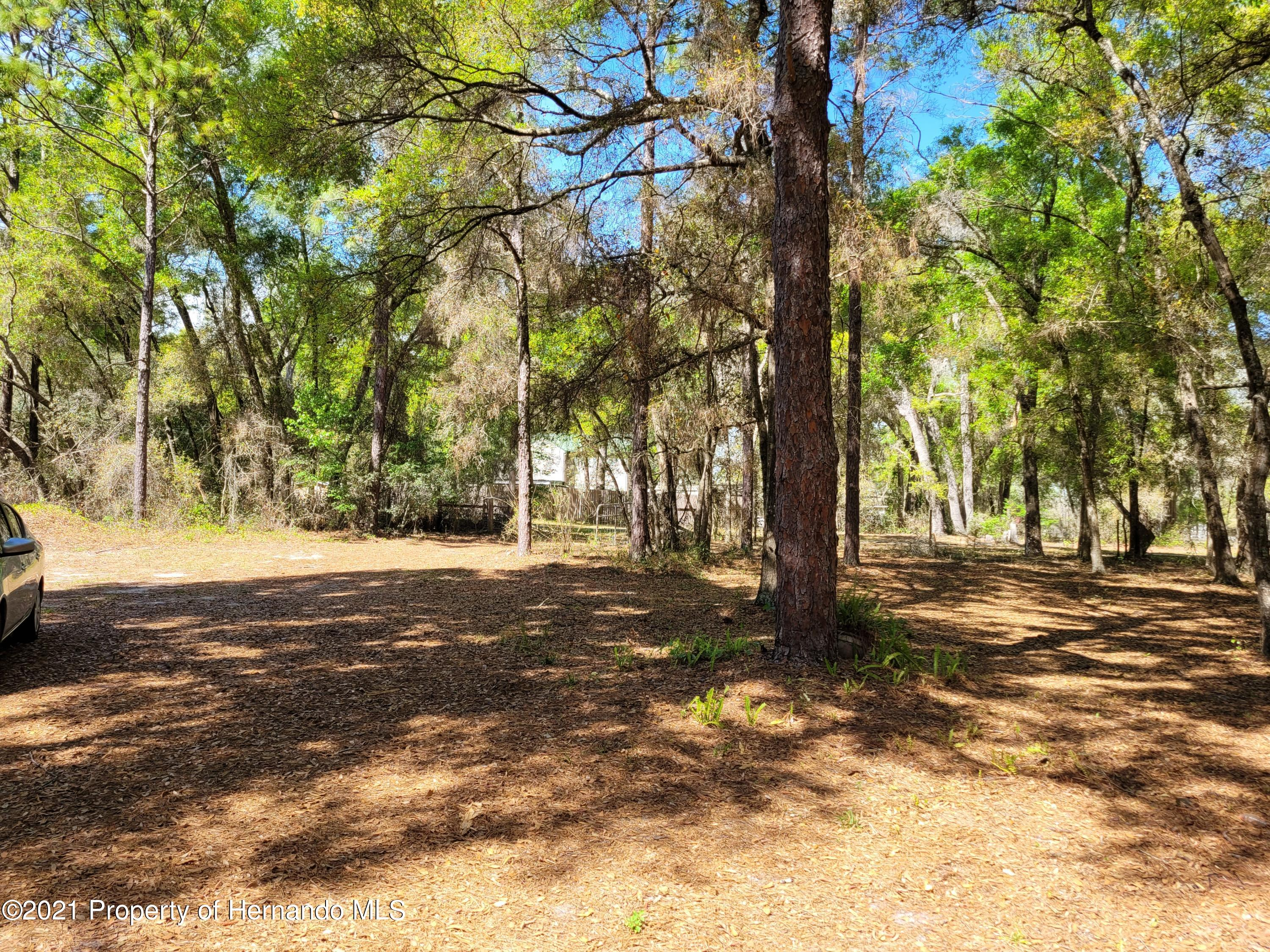 Listing photo id 9 for 17823 Caufield Road