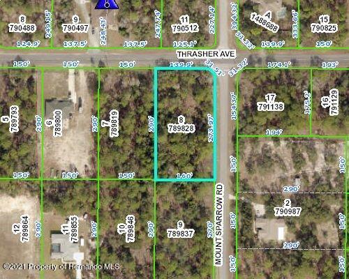 Details for 0 Thrasher Avenue, Weeki Wachee, FL 34614