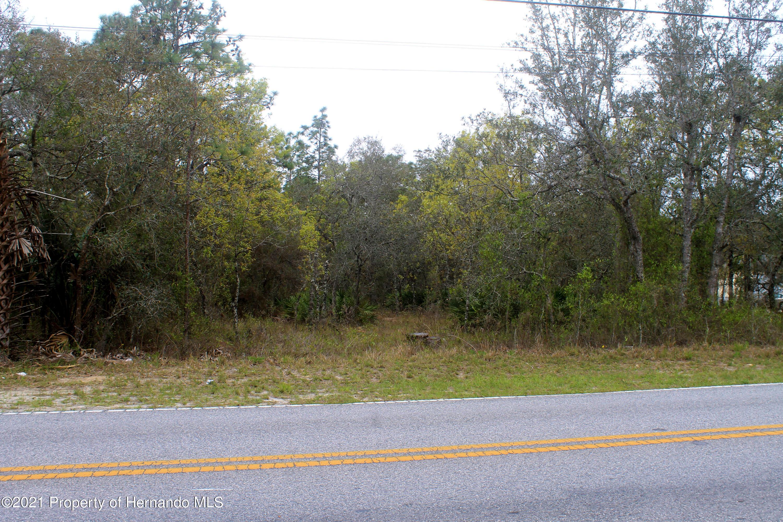Details for 12242 Knuckey Road, Weeki Wachee, FL 34614