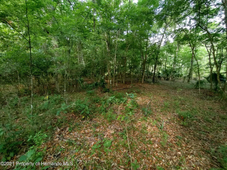 Listing photo id 7 for 12811 E Big Buck Trail