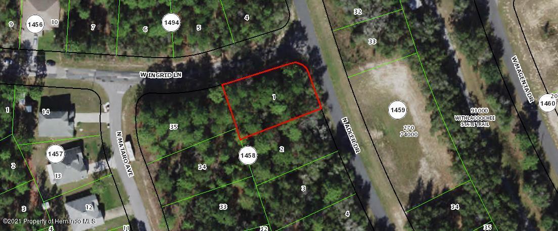 Listing Details for 11124 N Adler Drive, Citrus Springs, FL 34434