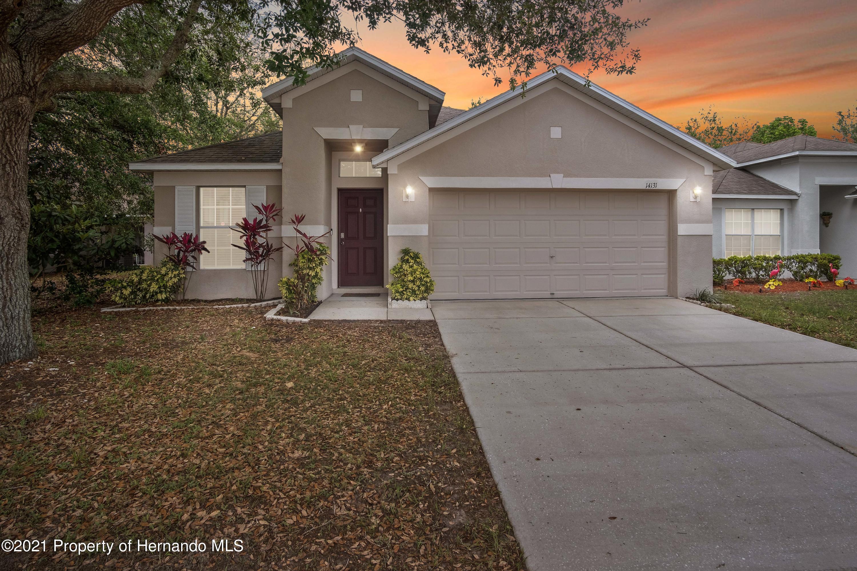 Details for 14131 Lemon Yellow Tree Lane, Brooksville, FL 34613
