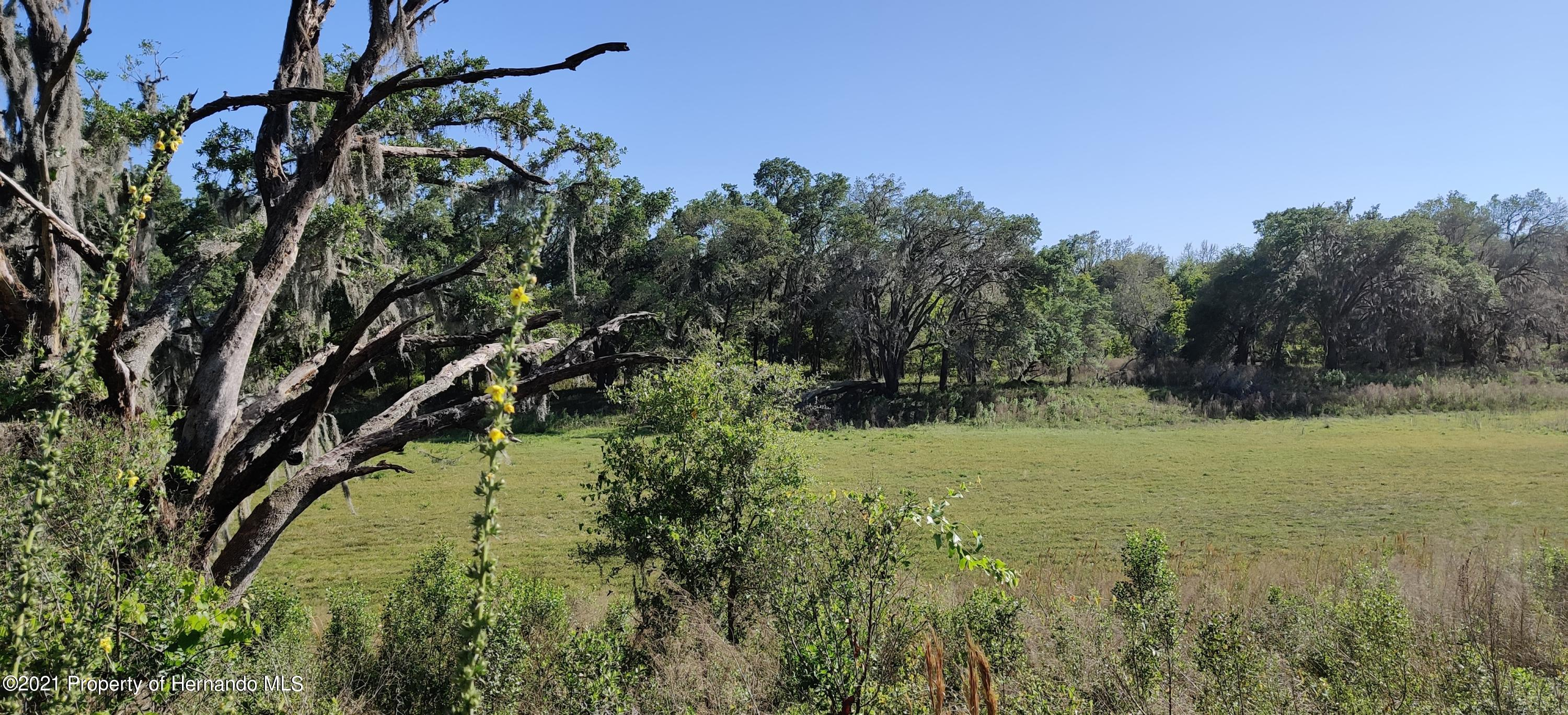 Details for 000 Mondon Hill And Wpa Road Road, Brooksville, FL 34601