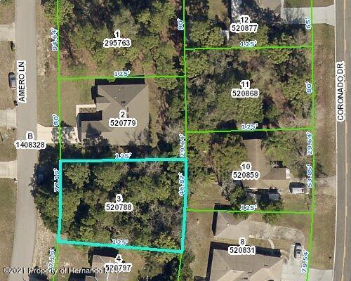 Listing Details for 0 Amero Lane, Spring Hill, FL 34609