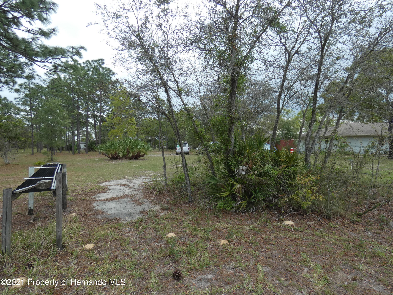 Image 10 For 8279 Sunshine Grove Road