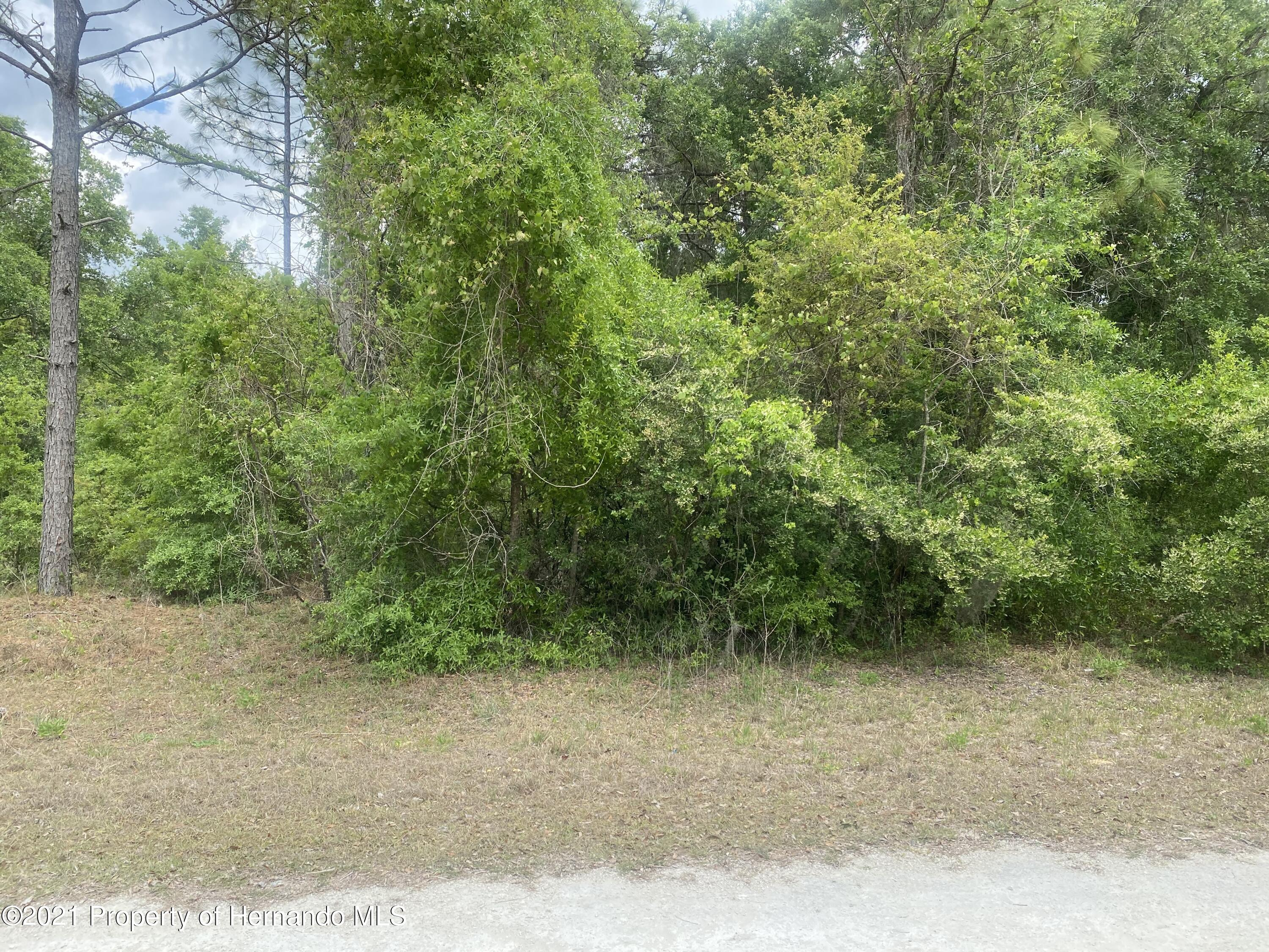 Details for 00 Canyon Swallow Road, Brooksville, FL 34614