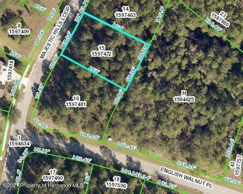 Details for 00 Majestic Hills Loop, Brooksville, FL 34601