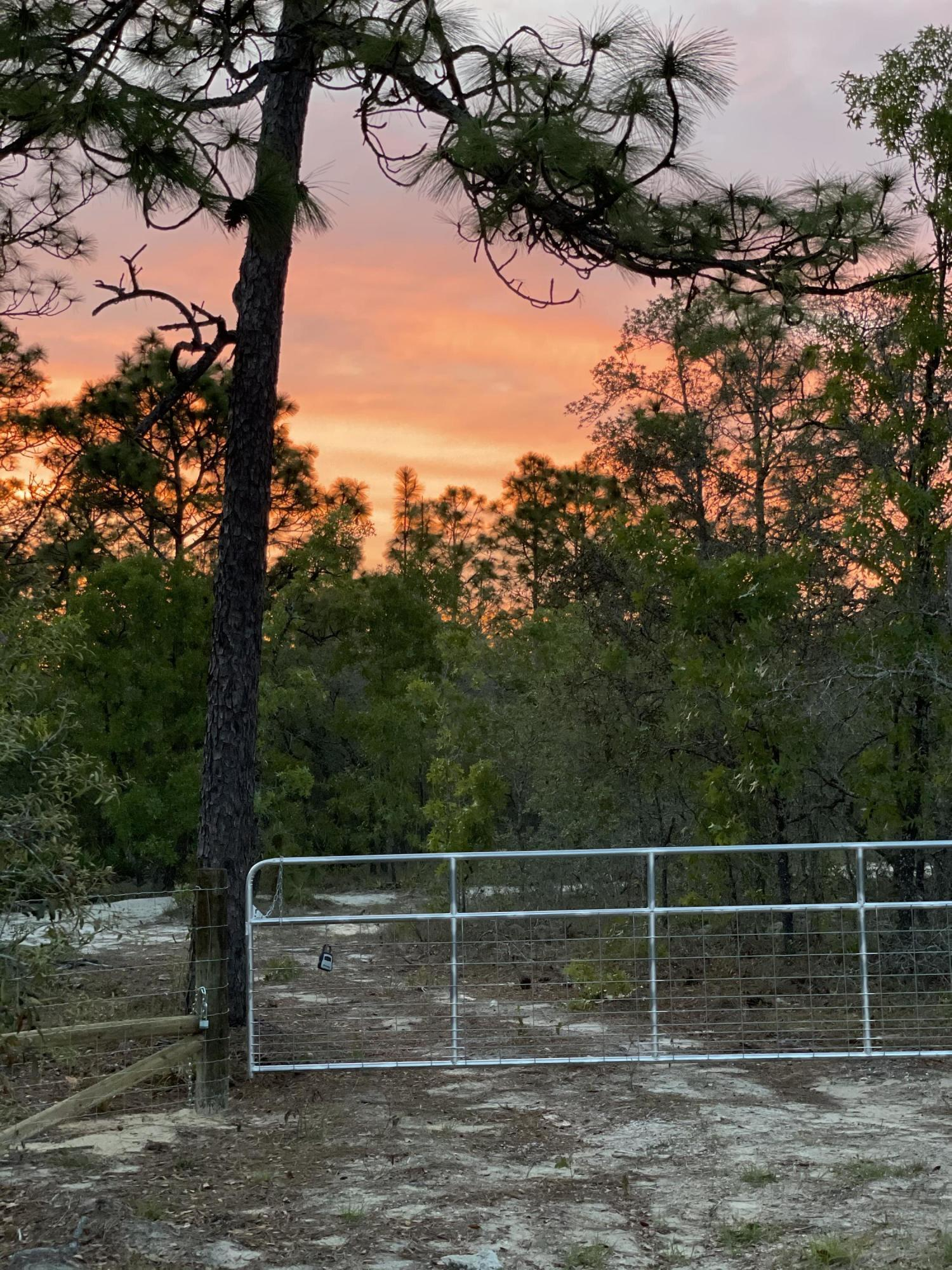 Details for 00 Hawks Nest Trail, Weeki Wachee, FL 34614