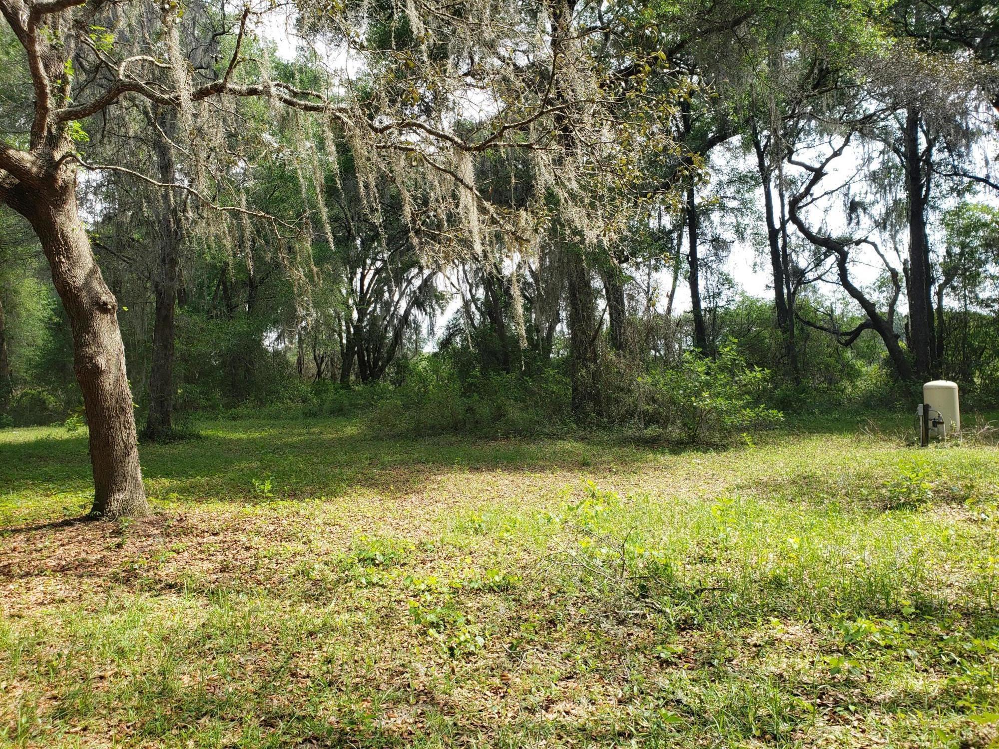 Image 3 For 16360 Seminole Boulevard