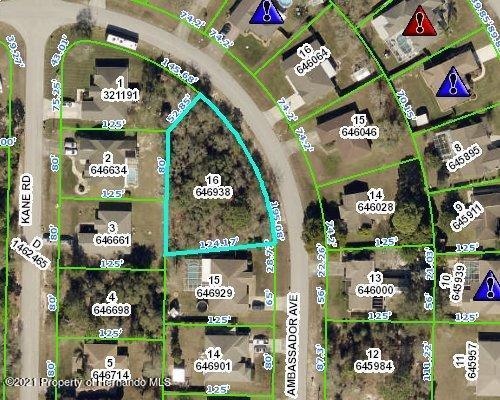 Listing Details for 0 Ambassador Avenue, Spring Hill, FL 34609