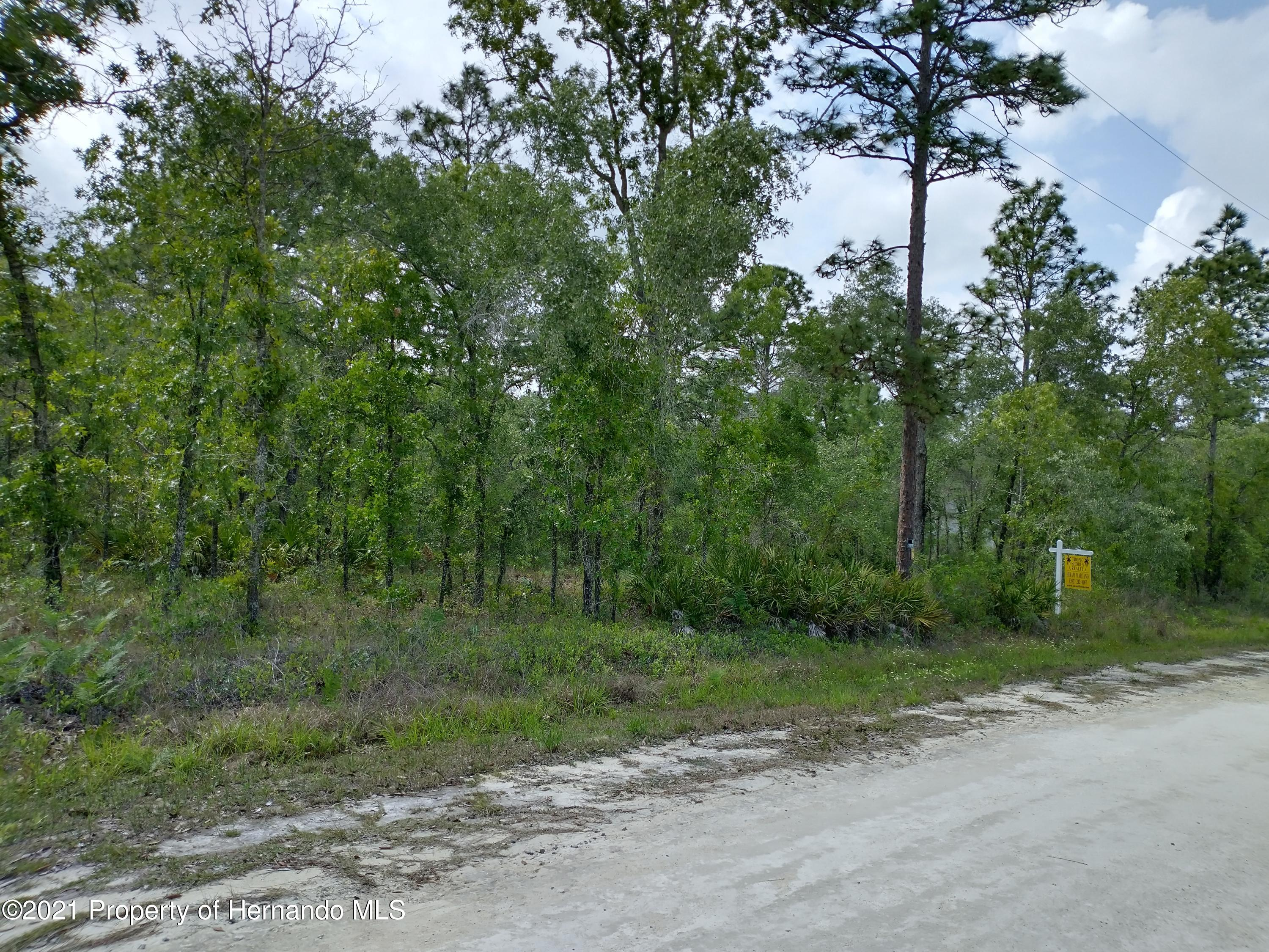 Listing photo id 2 for 0 Nimick Road