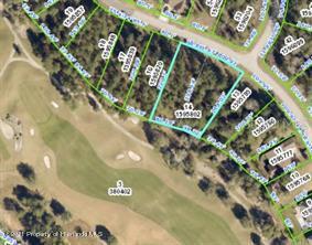 Listing Details for 0 Hickory Oak Drive, Brooksville, FL 34601