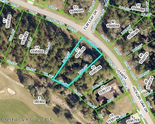 Listing Details for 4675 Hickory Oak Drive, Brooksville, FL 34601