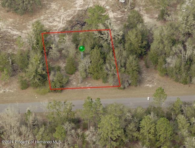 Listing Details for 1833 W Magenta Drive, Citrus Springs, FL 34434